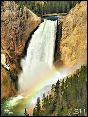 Lower falls of Yellowstone River photo by Suzanham