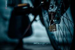 » My Chainlock photo by Jeff Krol