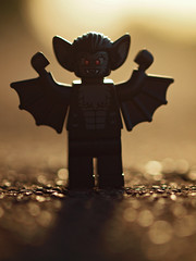 the menace of the manbat! photo by Johnson Cameraface