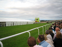 The track at Musselburgh Racecourse