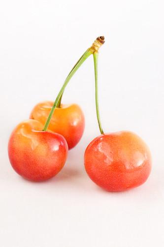 cherry-2-060908-JPG