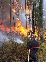 Un miembro del equipo de extinción sofocando las llamas (Foto EFE)
