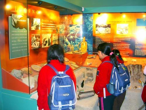 Te Wairoa Buried Village博物館-1