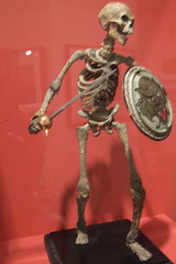 Ray Harryhausen Skeleton