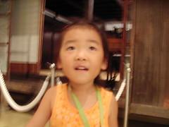 千葉県立中央博物館 わぁー おおきなおうち