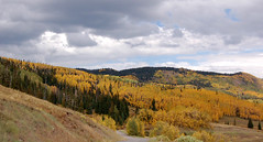 Aspens dotting the mountain sides