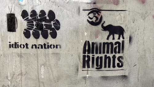 idiot-nation-animal-rights