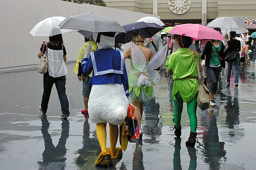 Donald in the rain