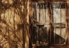 Abandoned House photo by hedbavny