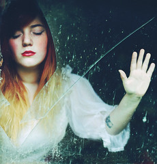 shards of a shattered mind photo by rebecca palmer.