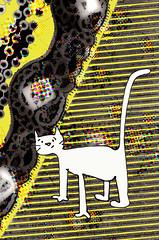 gato blanco photo by Selva.