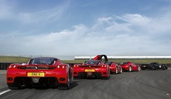 Enzo, Enzo, Enzo, Enzo or Enzo? photo by Alex Penfold