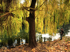 Fishing under a Weeping Willow photo by Habub3