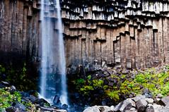 Svartifoss / Cascada Negra (Explore) photo by hunter of moments