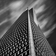 """Honeycomb"" - Grant Murray Photography © - Explored photo by grantmurrayphotography"