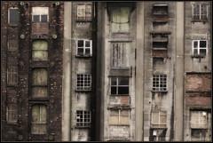 More Windows & Bricks - 20/365 photo by spicyspiral