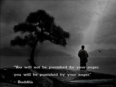 Buddha Quote 58 photo by h.koppdelaney