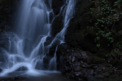 The place water falls 水の落つるところ photo by Masashi bon