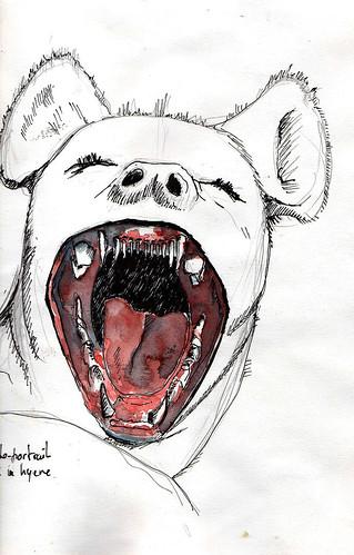 Autoportrait hyène
