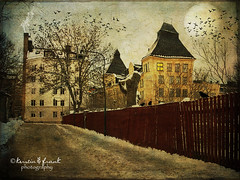 The red fence photo by Kerstin Frank art