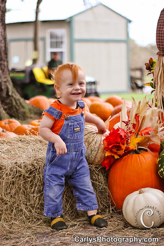 PUMPKIN PATCH - OCT 2012-10.jpg