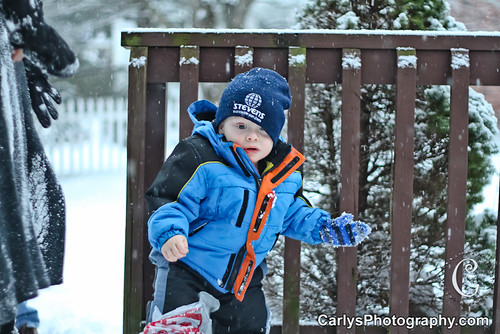 Kyton playing in the snow-3.jpg