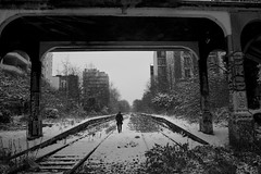 Paris, petite ceinture photo by flallier