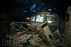 Egypt 2012 - Inside the Thistlegorm (Julian's Truck - 2012 Version) photo by Bigeye Bubblefish [  Addict  ]