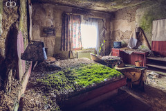 Green Mattress photo by David Pinzer