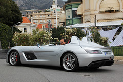 My name is Moss, Stirling Moss ! photo by Florian Joly Photography