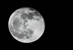 The Moon photo by Arif_Mahmood