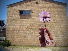 garden of eden 1 - Copy photo by falko splitpiece