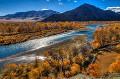 Altai-6070-20121008And4more-Edit.jpg photo by Miki Badt