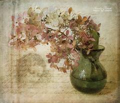 Still-life photo by Kerstin Frank art