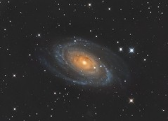 M81 - Grand Design Spiral Galaxy photo by John.R.Taylor (www.cloudedout.squarespace.com)