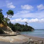 Island Bay Beach