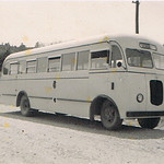 1950 Ford V8 bus - photo Kell Collection