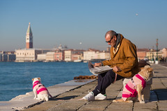 Continental Chic (Man, Newspaper & Dogs), Venice photo by flatworldsedge