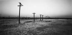Crucifixion Ground photo by joshuammulligan