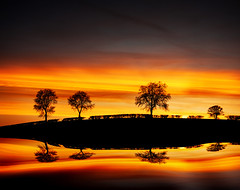 Reflections - #Explored photo by asheers