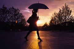 Sunshine in the Rain photo by Masaki_RR