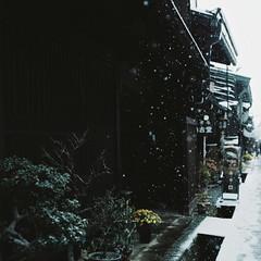 涔涔 -しんしん- photo by soreikea