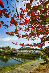 高雄中央公園 - Kaohsiung Central Park - Taiwan photo by urbaguilera