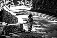 walk.. photo by meoca63