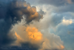 Storm Clouds photo by KamyriaM