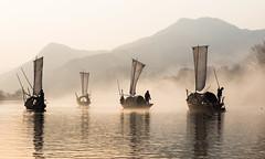 甌江帆影 photo by 郁軒的爸爸