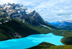 Peyto Lake Blue photo by Cole Chase Photography