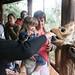 Jessica Feeding Giraffe
