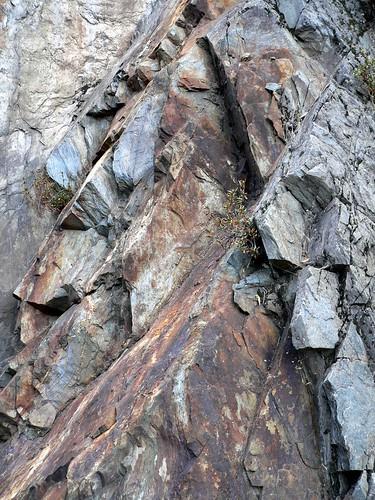 plumasrock9