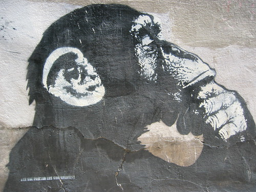 zgz 2006